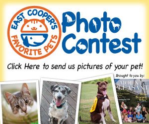 East Cooper Pet Photo Contest ... click!